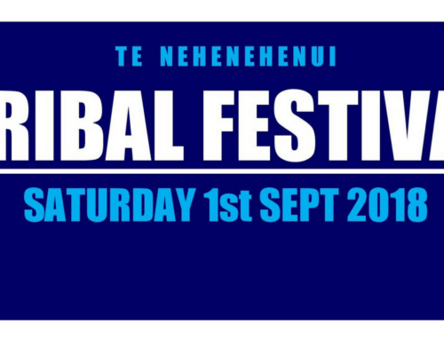 Te Nehenehenui Festival reaches 5-year celebration